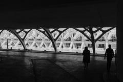 VALÊNCIA, ESPANHA - 28 DE JANEIRO DE 2019: Museu de artes e de ciência em Valência em um dia bonito foto de stock