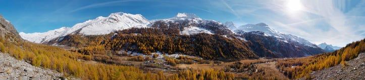 Val秋天季节的-阿尔卑斯, Courmayer, Val白鼬全景 免版税库存图片