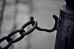 Val av frihet Fotografering för Bildbyråer