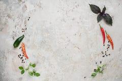 Val av kryddaörter och gräsplaner Ingredienser för matlagning många bakgrundsklimpmat meat mycket arkivfoto