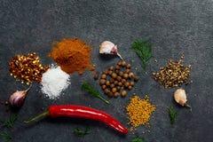 Val av krydda?rter och gr?splaner Ingredienser f?r matlagning Matbakgrund p? svart kritiserar tabellen royaltyfria bilder