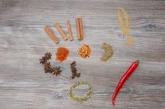Val av kryddor till maträtten royaltyfria foton