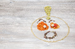 Val av kryddor till maträtten royaltyfria bilder