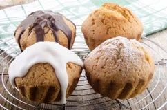 Val av muffiner på en stekhet kugge Royaltyfri Bild