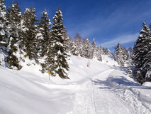 Val Blenio. snowy path Stock Image