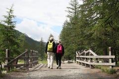 Val d `奥斯塔,意大利, 2018年7月4日:老年人景色夫妇从后面走在山的一个木桥 免版税库存照片