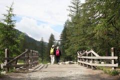 Val d `奥斯塔,意大利, 2018年7月4日:老年人景色夫妇从后面走在山的一个木桥 库存照片