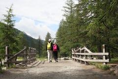 Val d `奥斯塔,意大利, 2018年7月4日:老年人景色夫妇从后面走在山的一个木桥 免版税库存图片