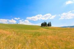 Val d'Orcia柏景色 免版税库存图片