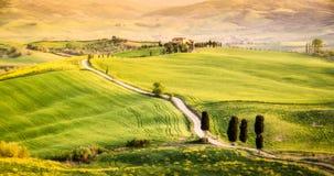 Val d ` Orcia,托斯卡纳,意大利 库存照片