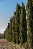 VAL D ` ORCIA, TUSCANY-ITALY, 2016年10月30日:与绵延山和谷的风景托斯卡纳风景在秋天 库存图片