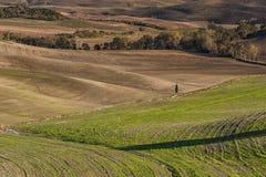 VAL D ` ORCIA, TUSCANY-ITALY, 2016年10月30日:与绵延山和谷的风景托斯卡纳风景在秋天 免版税库存照片