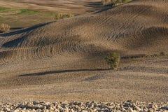 VAL D ` ORCIA, TUSCANY-ITALY, 2016年10月30日:与绵延山和谷的风景托斯卡纳风景在秋天 图库摄影