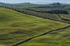 VAL D ` ORCIA, TUSCANY-ITALY, 2016年10月30日:与绵延山和谷的风景托斯卡纳风景在秋天 库存照片