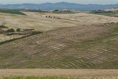 VAL D ` ORCIA, TUSCANY-ITALY, 2016年10月30日:与绵延山和谷的风景托斯卡纳风景在秋天 免版税库存图片