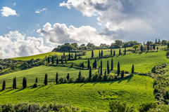 VAL D'ORCIA, TUSCANY/ITALY - 5月20日:农场在Val d'Orcia托斯卡纳 免版税库存照片
