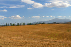 Val d'Orcia 图库摄影