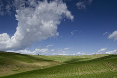 Val d'Orcia. Landscapes - tuscany Italy Stock Photography