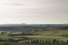 Val d`Orcia also called Valdorcia landscape in Tuscany at sunset, a very popular travel destination in Italy. Val d`Orcia or Valdorcia landscape in Tuscany at royalty free stock image