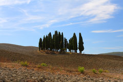 Val d'Orcia Royalty Free Stock Images