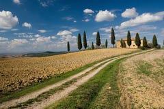 Val d'orcia landscape, tuscany Stock Photos