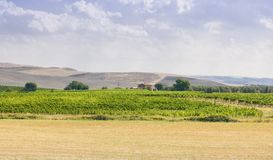 Val D Orcia landskap royaltyfri bild