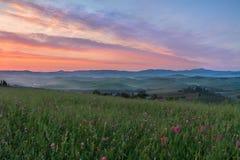 Val-d'Orcia nach Sonnenaufgang mit violettem Himmel, Toskana, Italien Stockfoto
