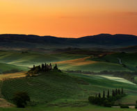 Val d' Orcia Sunrise, Tuscany (II). This image was taken 20 minutes prior to my previous view of the Belvedere.  I had decided to zoom out more to include the Royalty Free Stock Images