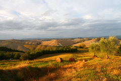 Val d'Orcia during sunset Stock Photos