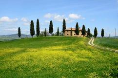 Val d'Orcia (Toskana) Lizenzfreies Stockfoto