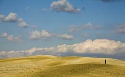 Val d'Orcia, toskanische Landschaft Lizenzfreie Stockfotografie