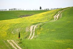 Val D\'Orcia, Tuscany Royalty Free Stock Photography