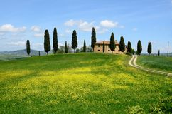 Val d'Orcia (Tuscany) Royalty Free Stock Photo