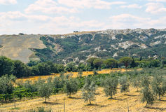 Val d'Orcia (Tuscany) Royalty Free Stock Photos