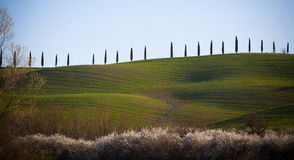 Val d'Orcia in Tuscany, Italy Stock Images
