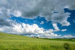 VAL D'ORCIA, TUSCANY/ITALY - 19 MAGGIO: Terreno coltivabile in d'Orcia Tu di Val Immagine Stock