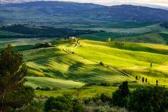 VAL D'ORCIA, TUSCANY/ITALY - 17. MAI: Gladiator Fields in Val-d Stockbild
