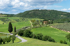 VAL D'ORCIA, TUSCANY/ITALY - 17. MAI: Landschaft von Val-d'Orcia Lizenzfreies Stockfoto