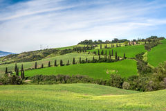 VAL D'ORCIA, TUSCANY/ITALY - 22. MAI: Landschaft von Val-d'Orcia herein Lizenzfreies Stockfoto