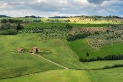 VAL D'ORCIA, TUSCANY/ITALY - 17. MAI: Val-d'Orcia in Toskana an Lizenzfreie Stockbilder