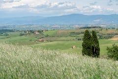 VAL D'ORCIA, TUSCANY/ITALY - MAJ 16: Lantgård i den Val d'Orciaen Tuscan Arkivbild