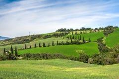 VAL D'ORCIA, TUSCANY/ITALY - MAJ 22: Sceneria Val d'Orcia wewnątrz Zdjęcie Royalty Free
