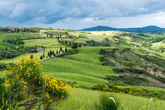 VAL D'ORCIA, TUSCANY/ITALY - MAJ 17: Val d'Orcia i Tuscany på Royaltyfri Bild