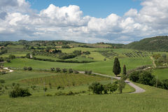 VAL D'ORCIA, TUSCANY/ITALY - 17 MEI: Platteland van Val-d'Orcia Stock Fotografie