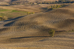 VAL D`ORCIA, TUSCANY-ITALY, OCTOBER 30, 2016: Scenic Tuscany landscape with rolling hills and valleys in autumn Royalty Free Stock Photography