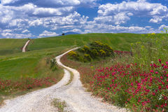 Val d'Orcia White road Royalty Free Stock Photography