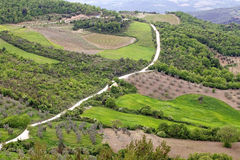 Val d'Orcia Landscape Royalty Free Stock Photography