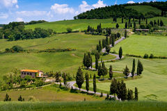 Val d'Orcia, Siena, Tuscany, Italy - Excursion in Mountain Bike Royalty Free Stock Photos