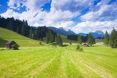 Val di fiemme plateau Royalty Free Stock Image