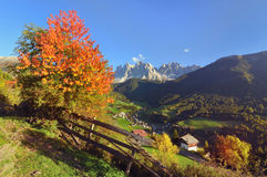 Val di Funes with odle in autumn. This beautiful valley is part of the Dolomite-Alps in Italy Royalty Free Stock Photo
